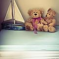 Teddy Bears by Jan Bickerton
