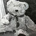 Teddy by Saundra Lane Galloway