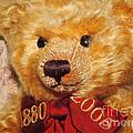 Teddy's Anniversary by Jutta Maria Pusl