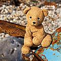 Ted's On The Rust Pile by Susie Peek