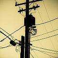 Telephone Pole 2 by Scott Campbell