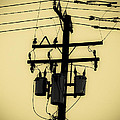 Telephone Pole 3 by Scott Campbell
