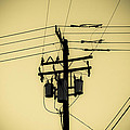Telephone Pole 4 by Scott Campbell