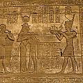Temple At Denderah Egypt by Brenda Kean