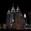 Temple Christmas Lights by Nicole Markmann Nelson