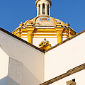 Templo De La Merced Guadalajara Mexico by David Perry Lawrence