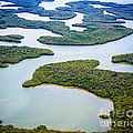 Ten Thousand Islands 12 by Tracy Knauer