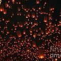 Ten Thousand Lantern Launch by Nola Lee Kelsey