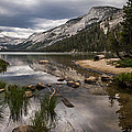 Tenaya Lake Outlet by Cat Connor