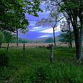 Tendar Morning by Roe Rader