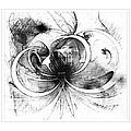 Tendrils In Pencil 01 by Amanda Moore