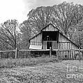 Tennessee Barn Bw by Chuck Kuhn