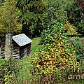 Tennessee Mountain Cabin by Skip Willits