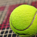 Tennis Anyone... by Kaye Menner