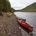 Tents And Canoes At Mcquesten River Yukon Canada by Stephan Pietzko