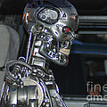 Terminator by Optical Playground By MP Ray