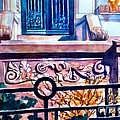 Terra Cotta And Iron Fence by Nancy Wait
