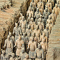 Terra Cotta Warriors by David Gleeson