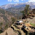 Terraced Fields - Nepal by Aidan Moran