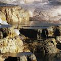 Terraces, Mammoth Hot Springs by Michel Hersen