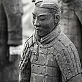 Terracotta Army Warriors In Xian China by Matteo Colombo