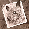 Terrier As Optical Illusion by Susan A Becker