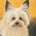 Terrier by Jeanne Fischer
