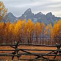 1m9354-teton Range In Autumn From Jackson Hole Ranch Country by Ed  Cooper Photography