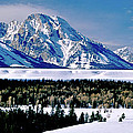 Teton Valley Winter Grand Teton National Park by Ed  Riche
