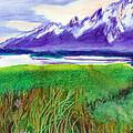 Teton View by C Sitton