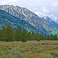 Tetons Above The Meadow In Grand Teton National Park-wyoming by Ruth Hager