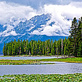 Tetons From Heron Pond In Grand Teton National Park-wyoming by Ruth Hager
