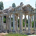 Tetrapylon The Arched Gate Of Aphrodisias by Tracey Harrington-Simpson