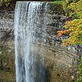 Tews Falls In Autumn by Barbara McMahon