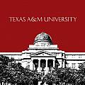 Texas A And M University - Dark Red by DB Artist