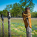 Texas Boot Fence by Inge Johnsson