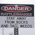 Texas Danger Rattle Snakes Signage by Thomas Woolworth