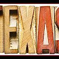 Texas by Donald  Erickson