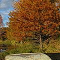 Texas Fall Color With Boat by Lynn Cromer