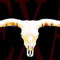 Texas Longhorns By Sharon Cummings by Sharon Cummings