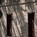 Texas Pioneer Church Doors by Connie Fox