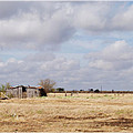 Texas Shack by Valerie Loop