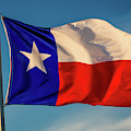 Texas State Flag - Texas Lone Star Flag by Panoramic Images