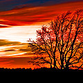 Texas Sunset by Darryl Dalton