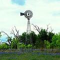 Texas Windmill And Bluebonnets by Marilyn Burton
