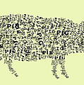 Text Pig