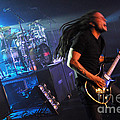 Tfk-steve-ty-3383 by Gary Gingrich Galleries