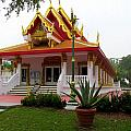 Thai Buddhist Temple IIi by Buzz  Coe