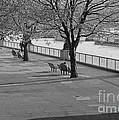 Thames Walkway by Richard Morris