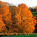 Thank And Praise by Debbie Nobile